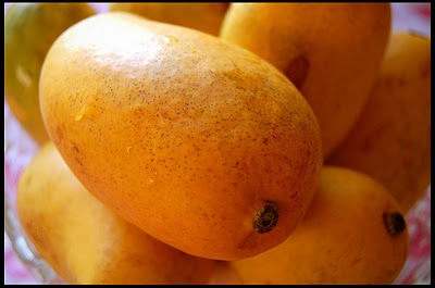 The mango is considered the king of fruits and the fruit of kings